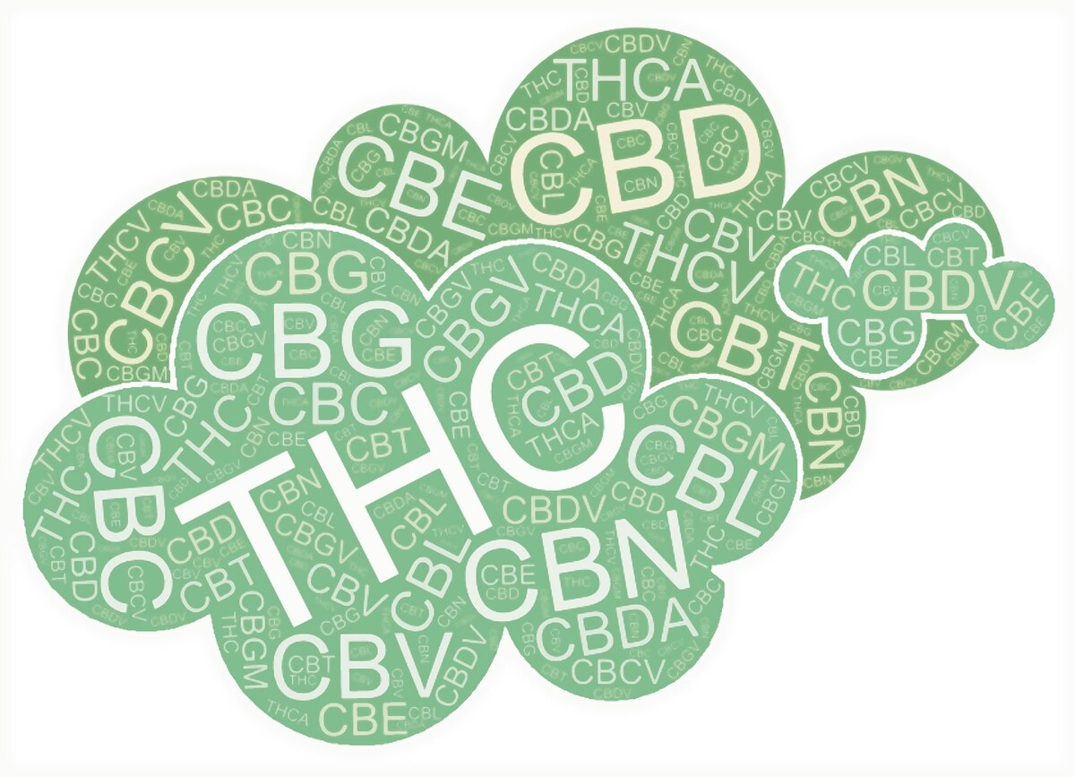 Cannabinoids 101 – The Familiar to the Unexplored